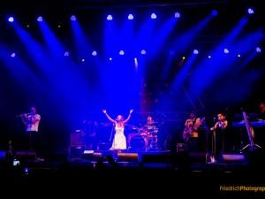 Afrikaferstival, Afrika Karibik Festival, Musikfestival, Aschaffenburg, Fotodukumentation, Reportage, Livefotograf, Konzertfotograf, Freshlyground