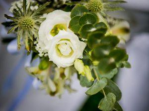 Hochzeit, Wedding, Photography, Hochzeitsfotograf, Aschaffenburg, Würzburg, Weinberg, Björn Friedrich,